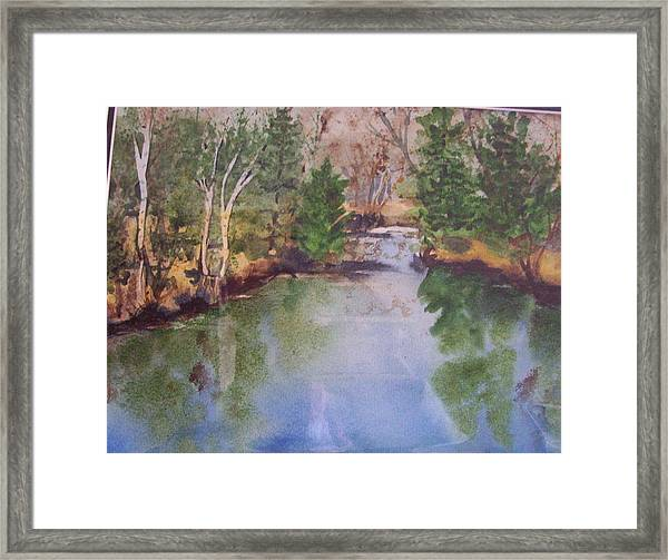 Dan S Pond Framed Print