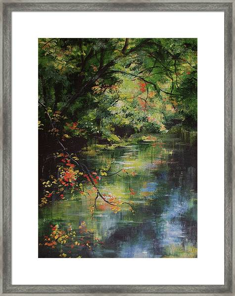 Dance Of Color And Light Framed Print