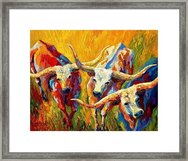 Dance Of The Longhorns Framed Print