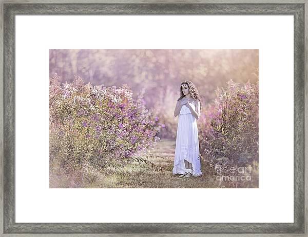 Dance Of The Sugar Plum Fairy Framed Print
