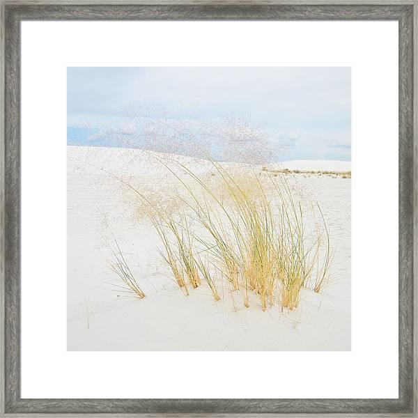 Dancing Grass Framed Print