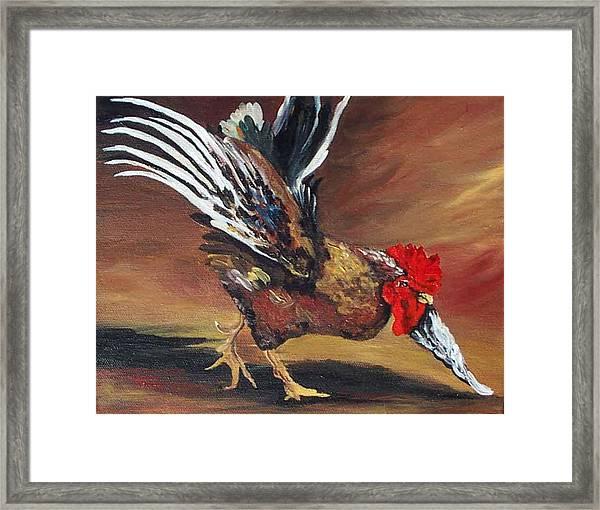 Dancing Rooster  Framed Print
