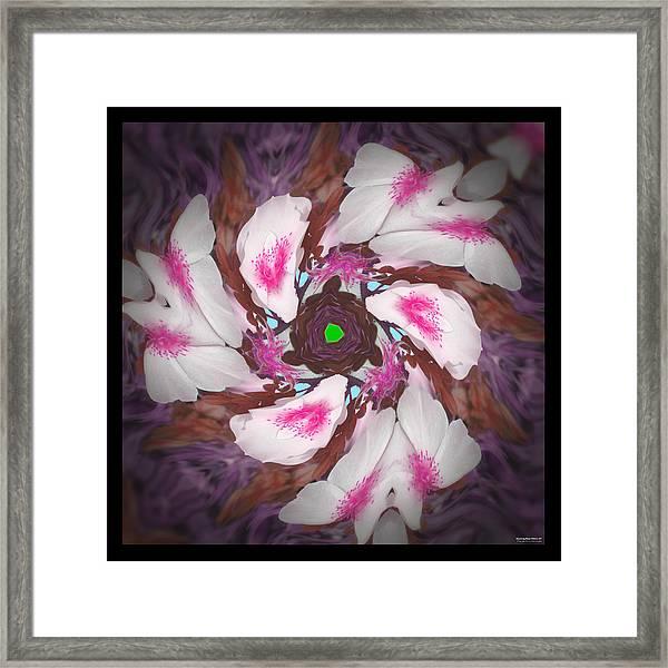 Dancing Rose Petals 57 Framed Print