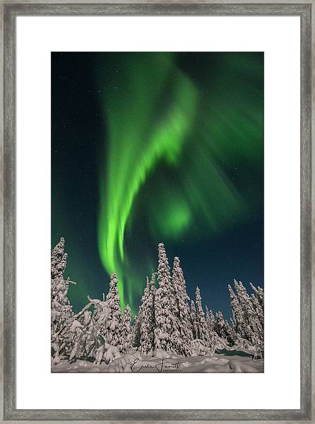 Dancing The Night Away Framed Print