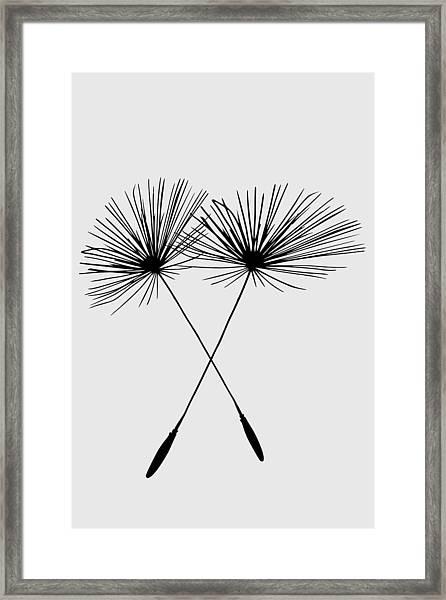 Dandelion Duo  Framed Print