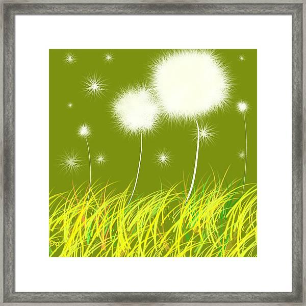 Dandelions Are Free Framed Print