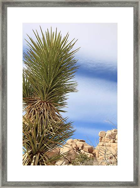 Danger Sharp Objects Framed Print