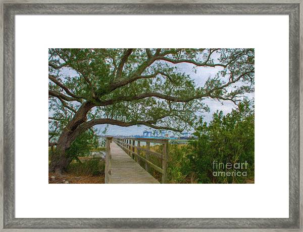 Daniel Island Time Framed Print