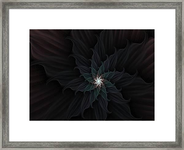 Dark Star Flower Framed Print