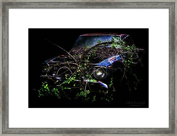 Framed Print featuring the photograph Datsun Treehouse by Glenda Wright