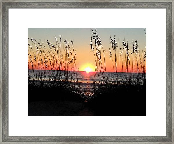 Dawn Of The Eclipse Framed Print
