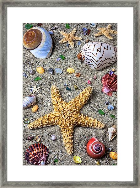 Day At The Beach Framed Print
