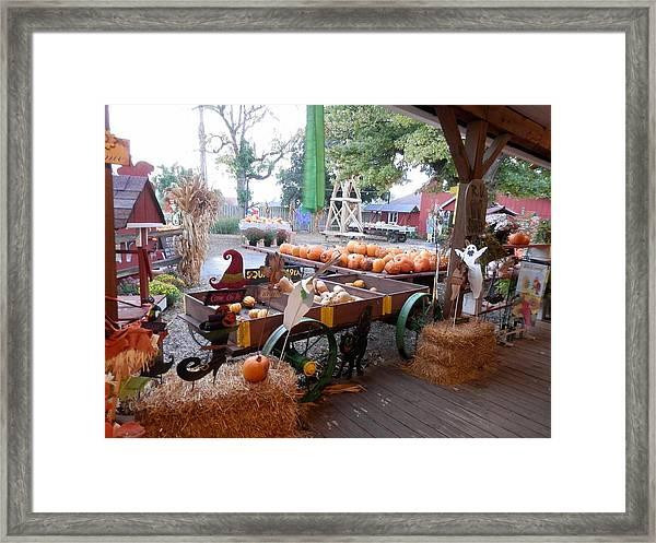 Day At The Pumkin Farm Framed Print