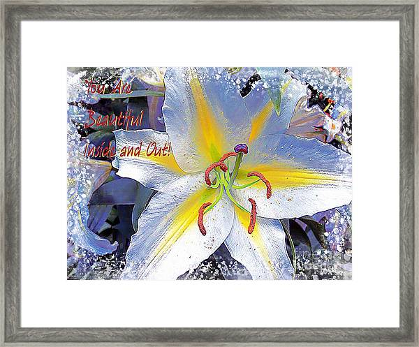 Day Lily Beauty Framed Print
