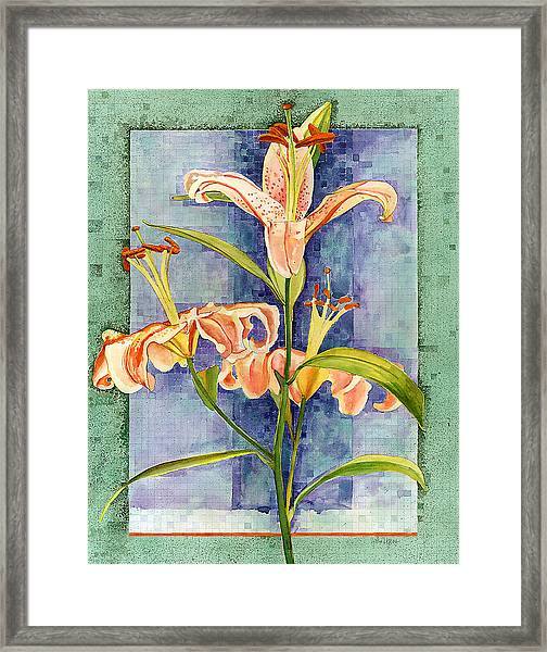 Day Lily Framed Print
