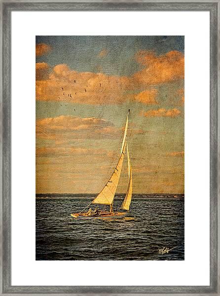 Day Sail Framed Print