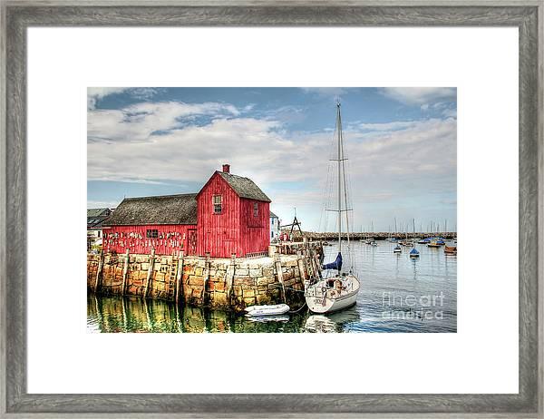 Days Of Summer Framed Print