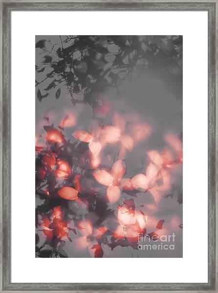 Death Blooms Framed Print