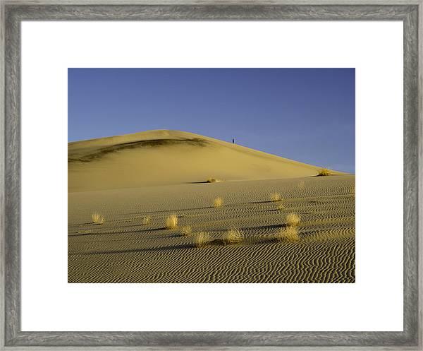 Death Valley Sand Dune At Sunset Framed Print