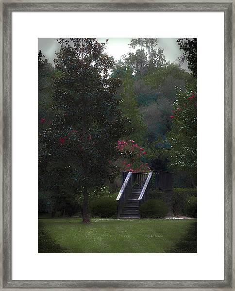 Deck Of Appeasement Framed Print