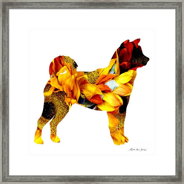 Decorative Husky Abstract O1015g Framed Print