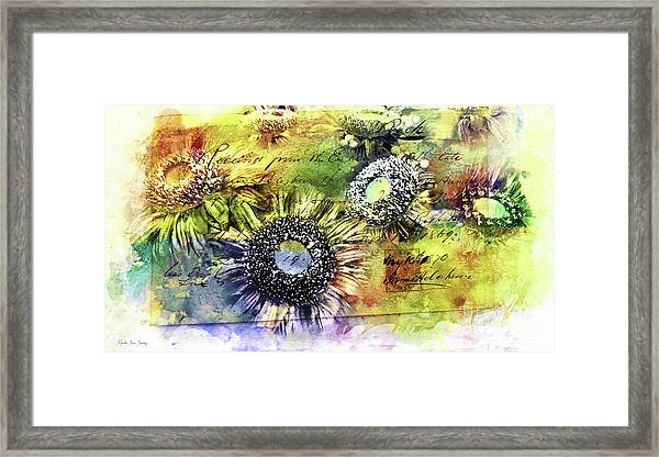 Framed Print featuring the painting Decorative Sunflowers Mixed Media A772016  by Mas Art Studio