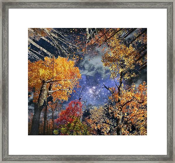Deep Canopy Framed Print