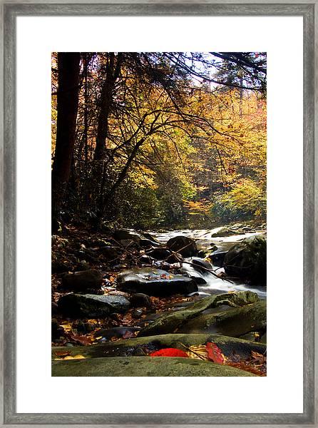 Deep Creek Mountain Stream Framed Print