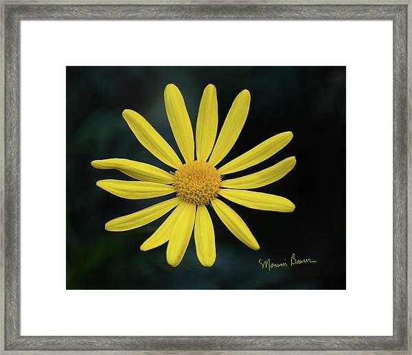 Deep Yellow Flower Framed Print
