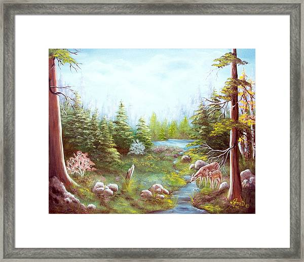 Deer And Stream Framed Print