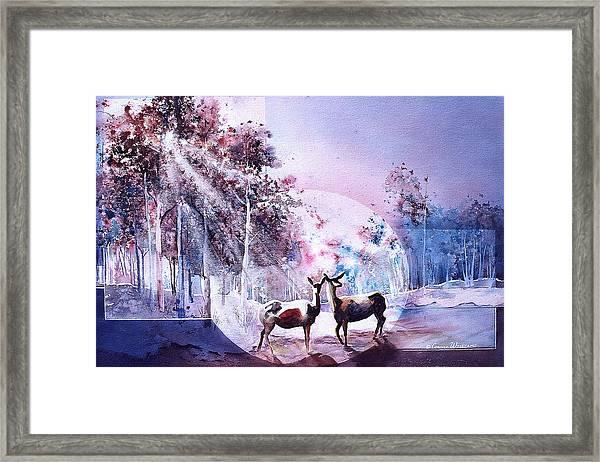 Deer Enchantment Framed Print