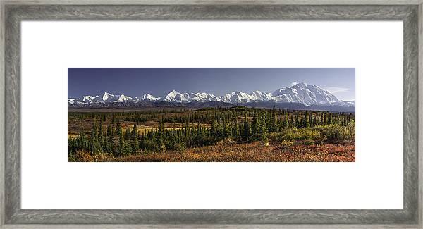 Denali Tundra Framed Print