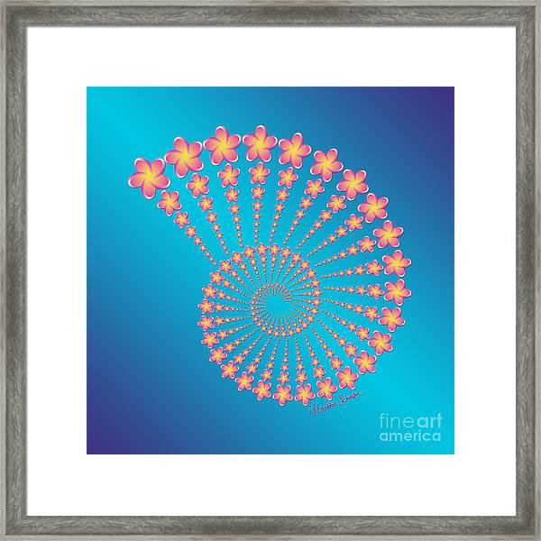 Denise's Frangipani  Spiral Shell Framed Print