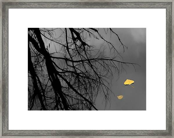 Departed Framed Print
