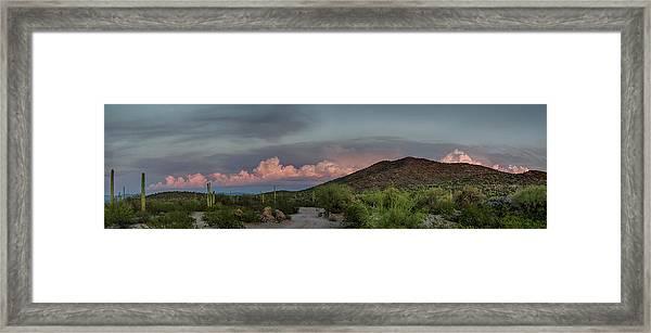 Desert Delight Framed Print
