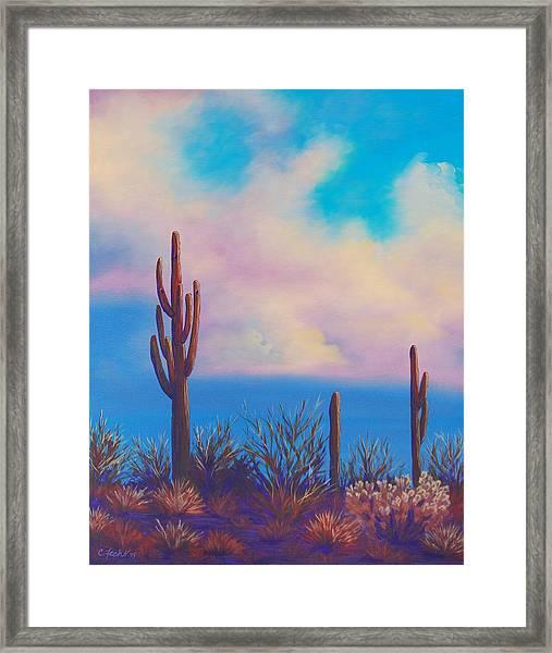 Desert Fog Framed Print