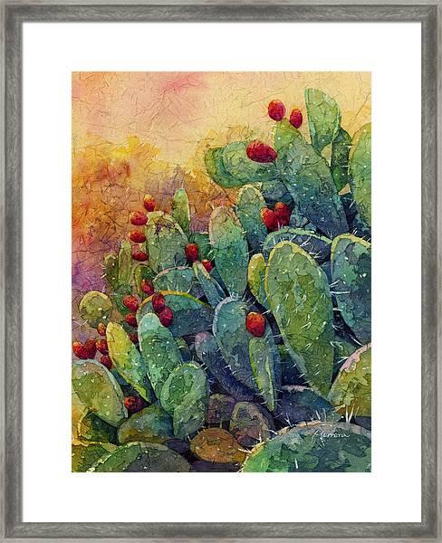 Desert Gems 2 Framed Print
