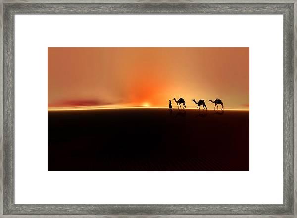 Desert Mirage Framed Print