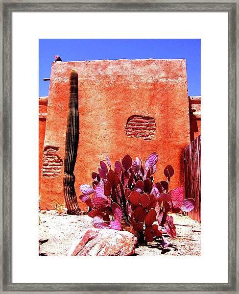 Desert Solace Framed Print