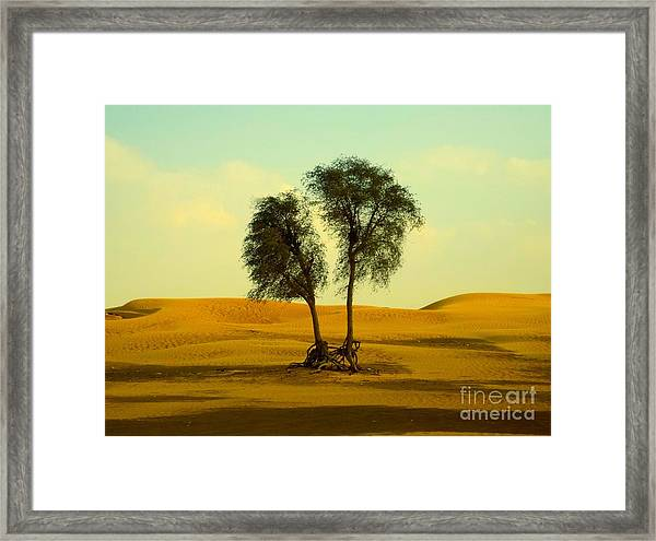 Framed Print featuring the photograph Desert Trees by Barbara Von Pagel