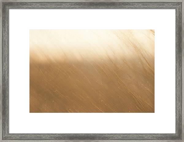 Desert Wind 2 Framed Print