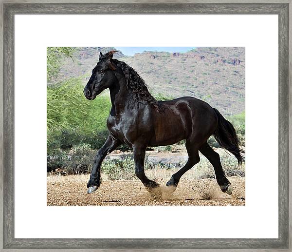 Desert Wind Framed Print
