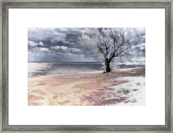 Deserted Beach Framed Print