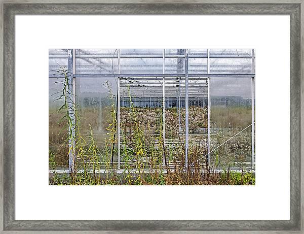 Deserted City Of Glass Framed Print