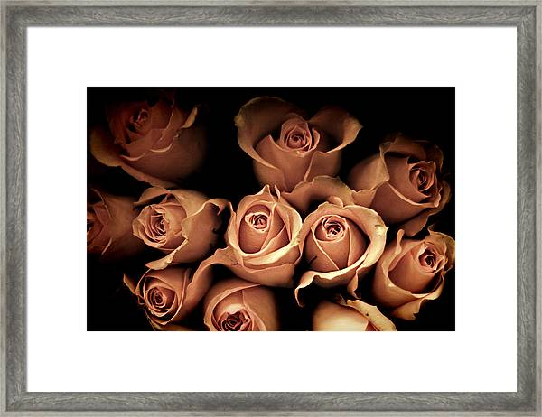 Desire Framed Print by Amy Tyler