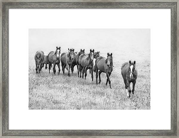 Destiny Of Freedom Framed Print