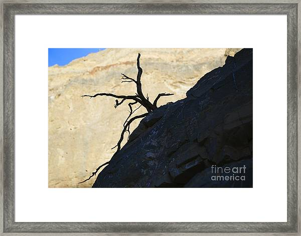 Determination To The End Framed Print