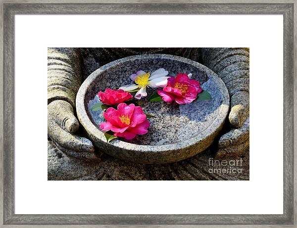 Devotional Framed Print