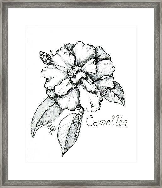 Dew Kissed Camellia Framed Print