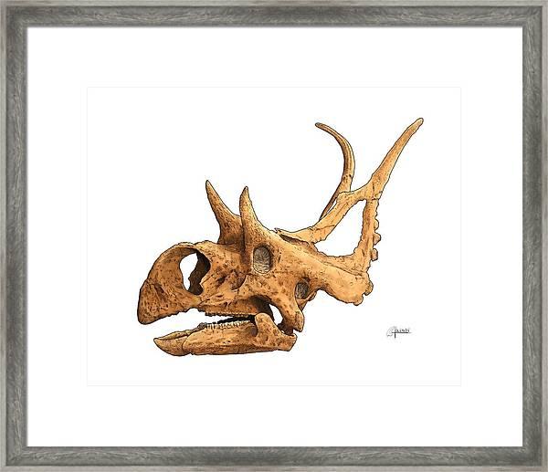 Diabloceratops Framed Print